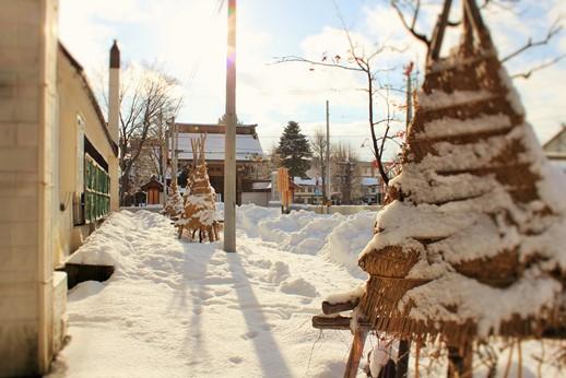 冬の風景.jpg