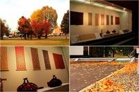 秋の風景とウィンドー.jpg